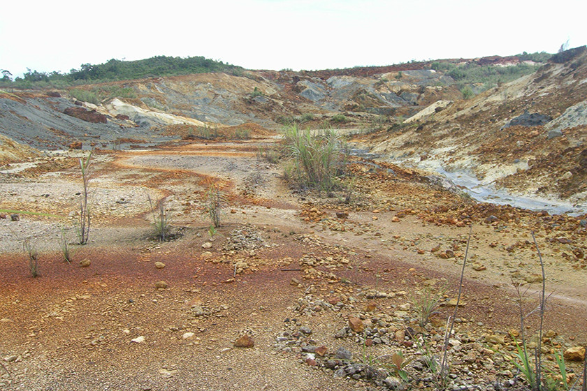 Polluted Sites (Abandoned Bagacay Mine, Samar)